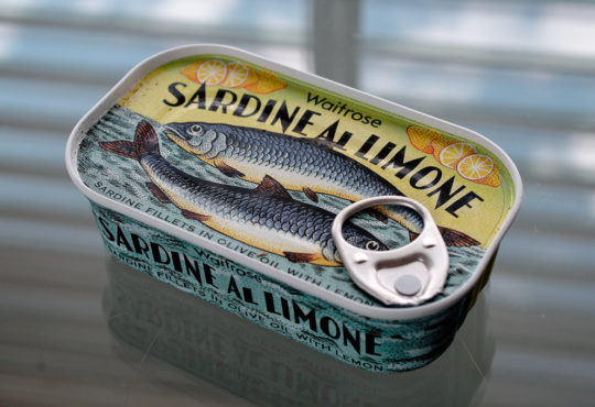 united colors of sardine