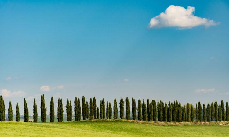 vie del gusto in Italia